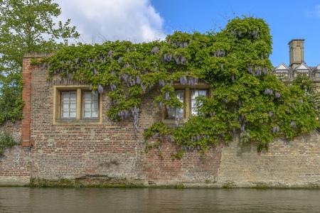 River Tour at Cambridge University, England. photo