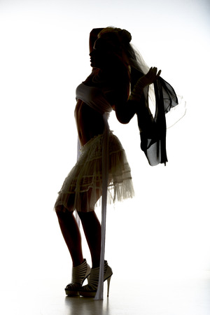 Silhouette of a Bride against a white background.