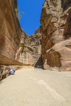 The Siq, the narrow canyon that serves as the entrance passage to the hidden city of Petra, Jordan.