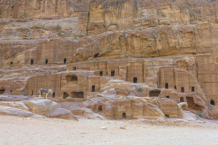 Ancient houses on Facade Street in Petra carved out of the rock in Jordan