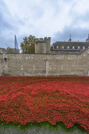 Londen, Verenigd Koninkrijk - 16 november 2014: Bijna 900.000 keramische klaprozen zijn geïnstalleerd bij de Tower of London om de betrokkenheid van Groot-Brittannië in de Eerste Wereldoorlog herdenken Stockfoto - 37548921
