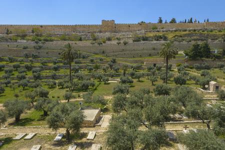 City Walls of Jerusalem above the Kidron Valley, Jerusalem