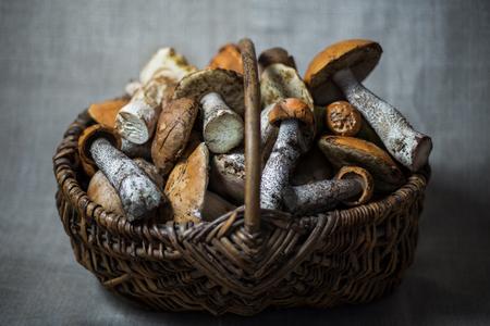 wild mushrooms: Wild mushrooms in a basket