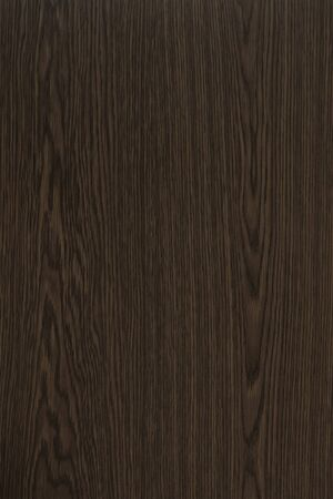 Wood background texture. Texture of wood background closeup.