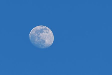 Big moon in the blue sky Imagens - 147011949