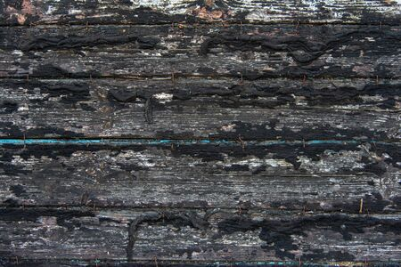 Old wood texture background, wooden board, rustic fence.