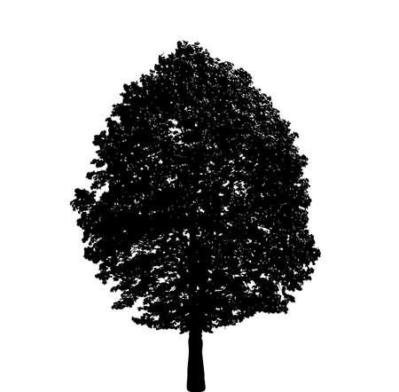 木のシルエット 写真素材 - 91802575