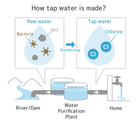 Illustration of How tap water is made?