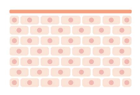 Skin cell pattern Flat illustration (normal skin)