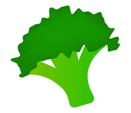 Simple broccoli vector flat illustration