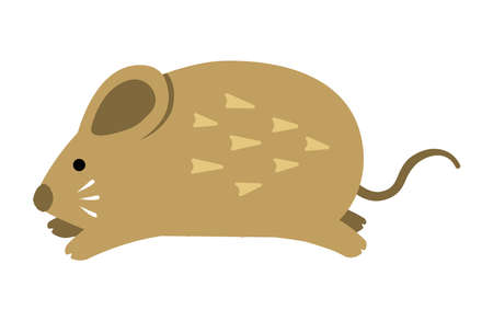 Running mouse illustration for New year greeting card ( 2020 )