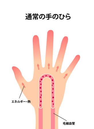 Normal hand blood circulation illustration