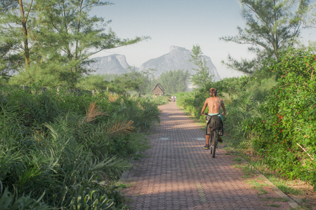 wooded: Wooded Cycle Lane in Rio de Janeiro, Brazil Stock Photo
