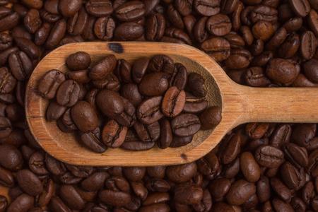 coffea: Close-up on Coffee beans into a spoon. Coffea arabica