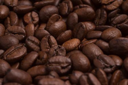 coffea: Close-up on Coffee beans. Coffea arabica.
