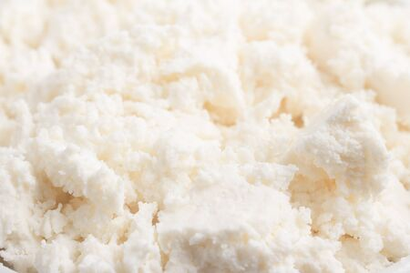 ricotta cheese: Close-up on a Ricotta Cheese Stock Photo