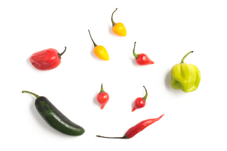capsaicin: Different types of Pepper Spice isolated in white background