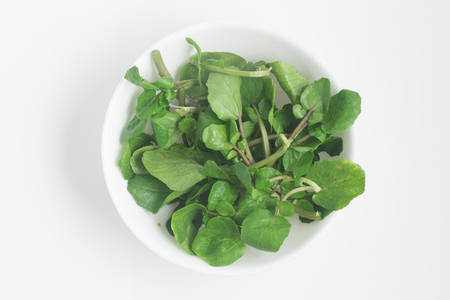 berros: Fresh Watercress Leaves into a bowl over a white background