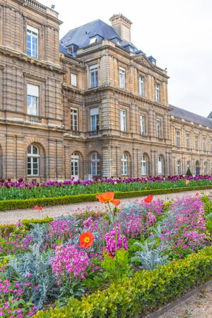 Paris, France - APRIL 9, 2019: Luxembourg Garden. Beatiful Tulips. Paris, France, Europe 写真素材 - 133706860