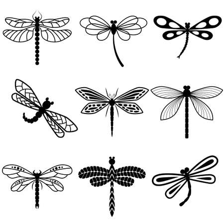 Dragonflies, black silhouettes on white background. Vector