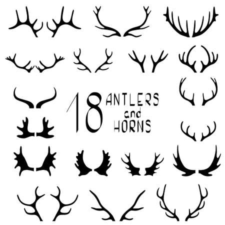 horny: Set of 18 deer antlers and horns isolated on white.
