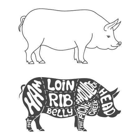 cut: Pork cuts diagram. Hand drawn butcher cuts scheme