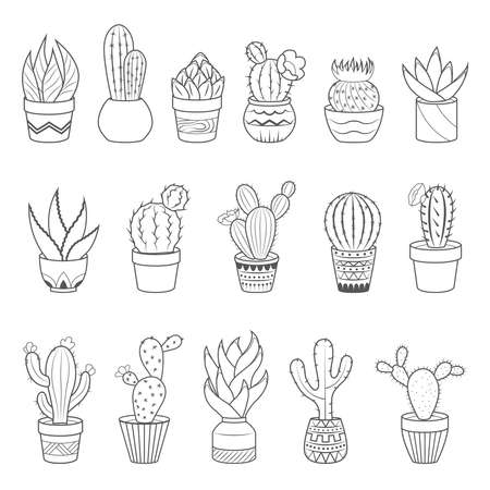 Set of 16 cactuses and succulents in flower pots. Home cactus plants with prickles and flowers. Exotic tropical collection of various succulents