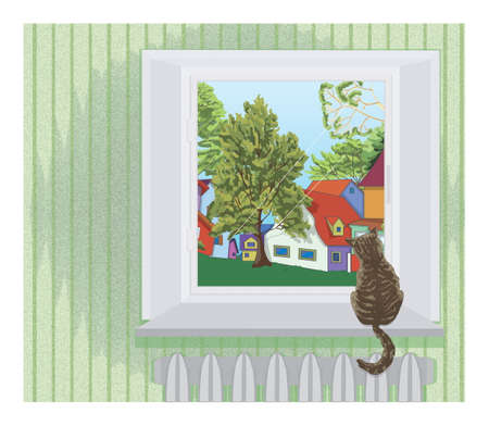 backview: Cat on the window
