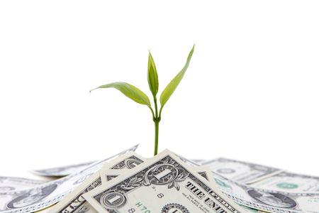 us money: Money growth concept Stock Photo