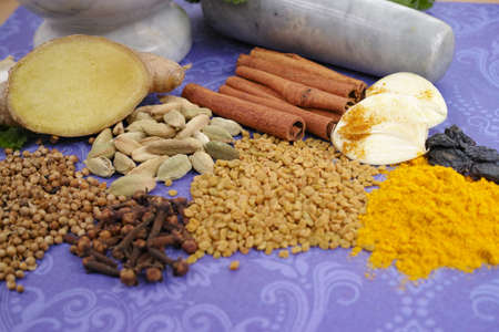 indian spices: Indian spices, fresh coriander, ginger, garlic and dried cardamom, cloves, cinnamon on purple background, copy space