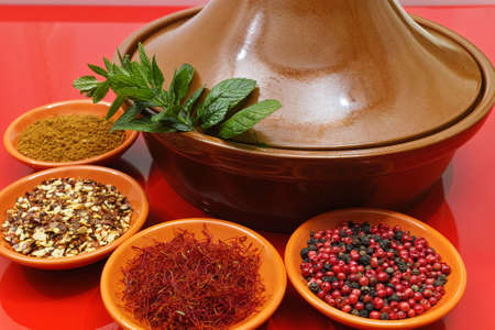 ras: Moroccan tahine with four bowles with saffron, pepper, ras el hanout, fresh mint on red background, delicious North African spicy food Stock Photo
