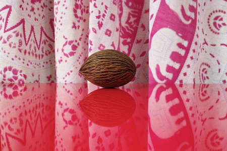 red background: Big Foxtail palm seed on red table top with reflection, indian style curtain