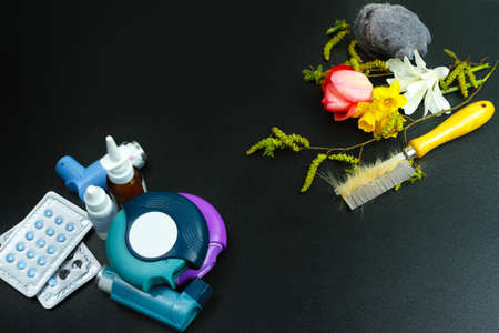 Asthma of allergy relief concept, seasonal allergens - pollen and flowers, pet hair and home dust, copy space