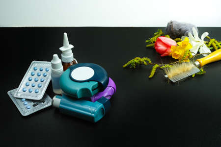 allergens: Asthma of allergy relief concept, seasonal allergens - pollen and flowers, pet hair and home dust, copy space