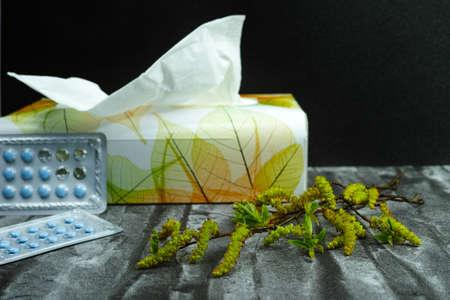 alergenos: La gripe, la fiebre y el concepto de alivio de la alergia, los al�rgenos estacionales - tejidos de polen y de papel, espacio de copia Foto de archivo