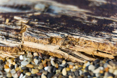 blemished: Old textured wooden planks on beach front, copy space