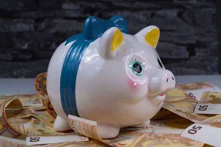 sucess: Piggy bank and euro banknotes -  sucess of money laundering business concept