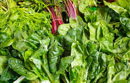 Vehículos del mercado - variedad de ensaladas verdes Foto de archivo
