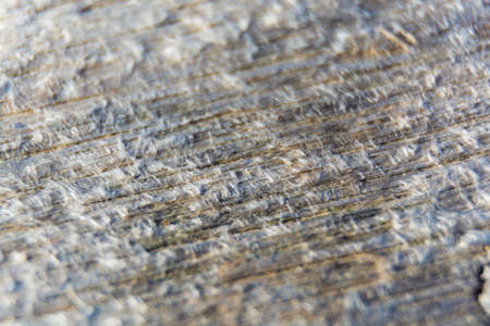 beach front: Old textured wooden planks on beach front, copy space