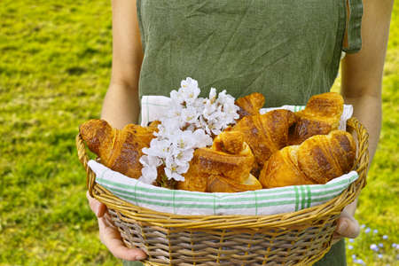 picnick: Young woman in green apron holding a wicker basket of fresh baked croissants