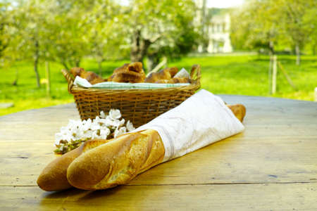 picnick: Fresh baked french baguettes and croissants in the green spring garden