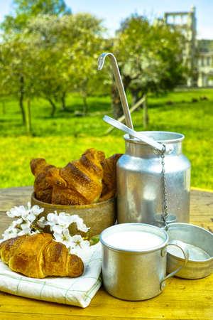picnick: Aluminum milkcan witn organic milk and fresh baked croissants in the green spring garden