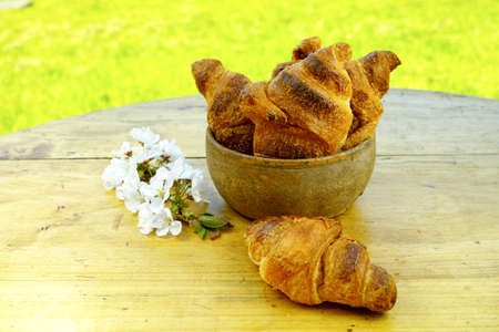 picnick: Fresh baked croissants in the green spring garden Stock Photo