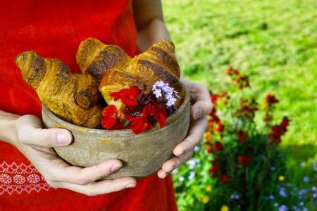 picnick: Young woman in red apron holding a plate of fresh baked croissants Stock Photo