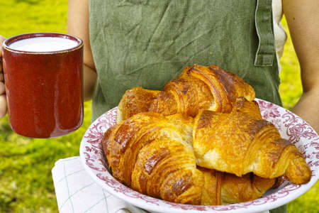 picnick: Young woman in green apron holding farm milk and plate with fresh baked croissants