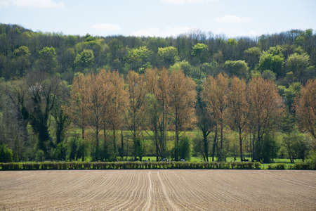 ploughed: Agricultural ploughed field and spring forest in Normandy, France
