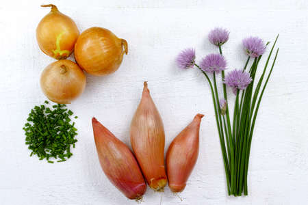 olive green: Fresh green blooming chives, shallots and yellow onion on olive wood background