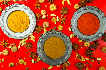 variability: Colorful variety of Indian spices on red background