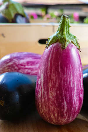 Eggplants of different color and variety in wooden box on the table