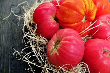 Big pink organic french tomatoes from own garden on black wooden background Stock Photo